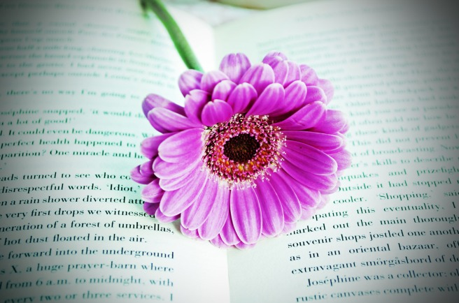 flower-on-the-book.jpg
